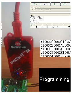 microcontroller embeded software programming